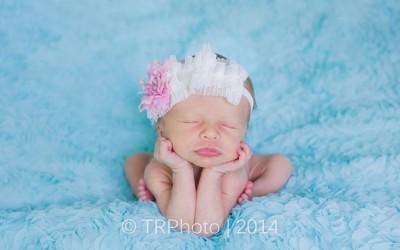 Emily Sophia's Newborn Photos